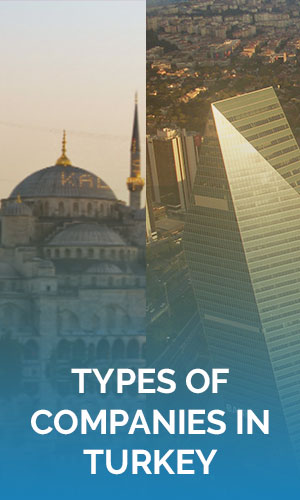 Types of Companies in Turkey